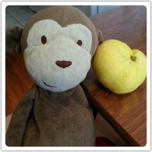 LemonPoppySeedCookie6