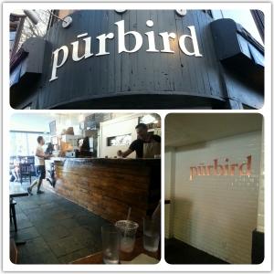 purbird0a